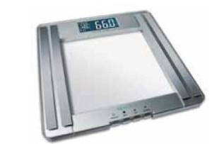 Modelo 40445
